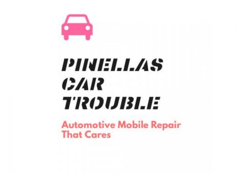 Mike the Pinellas Mobile Mechanic